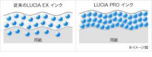 LUCIA EX