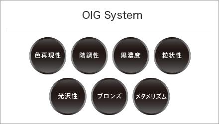 OIG System